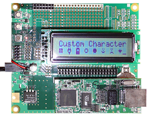 Rabbit RCM3720 LCD example program8